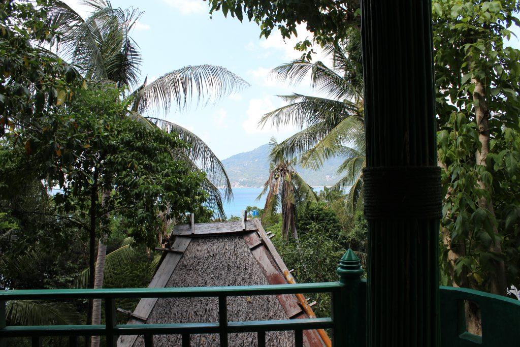 Ausblick Zimmer im Dschungel