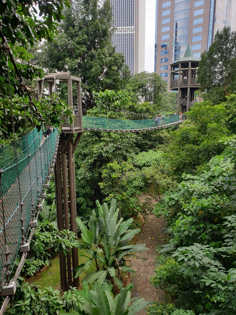 Malaysia - Kuala Lumpur - Sehenswürdigkeiten - KL Forest Eco Park