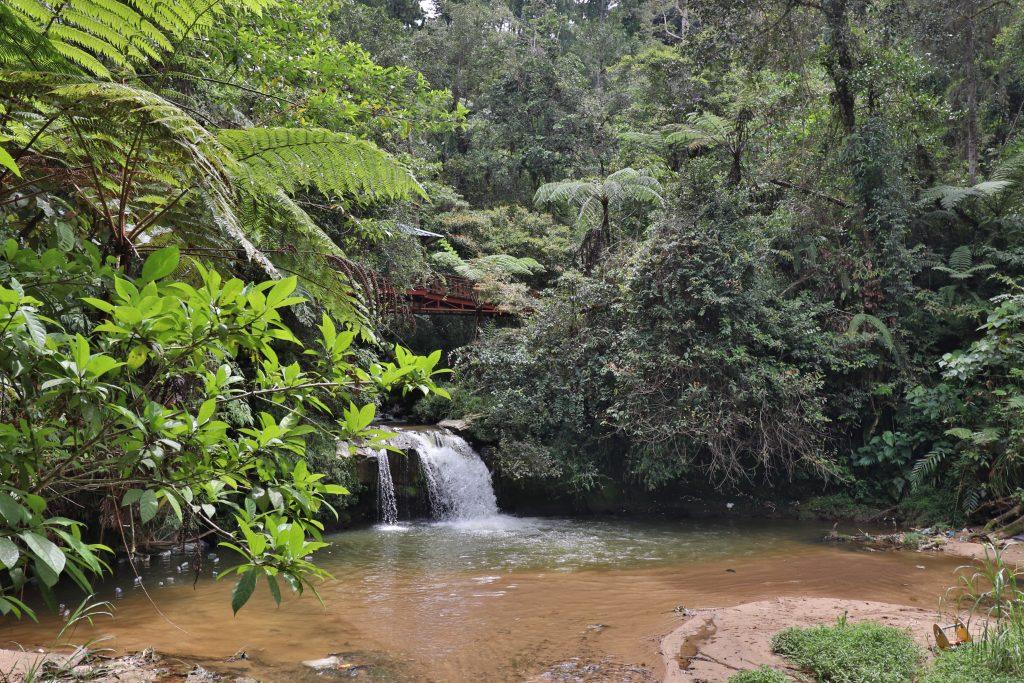Malaysia - Cameron Highlands - Sehenswürdigkeiten - Parit Waterfalls
