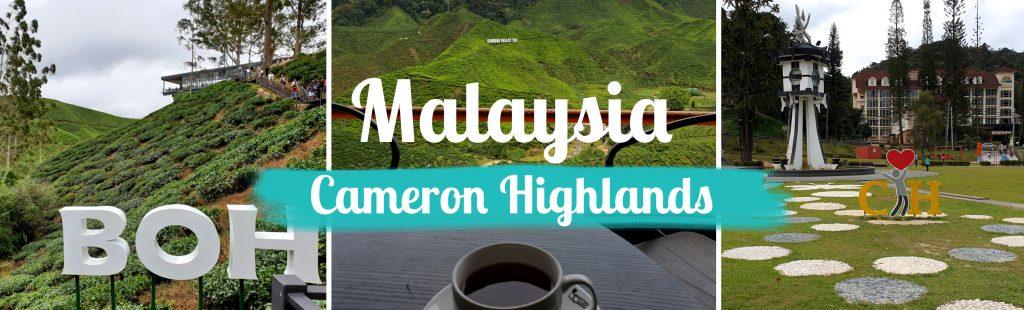 Malaysia - Cameron Highlands - Titelbild