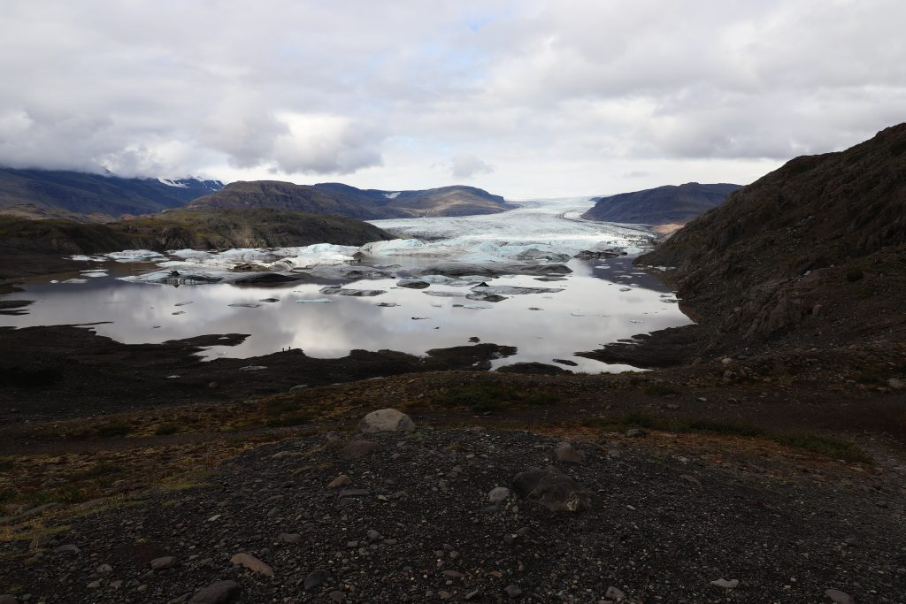 Island - Westisland - Hoffell Glacier - Gletscher