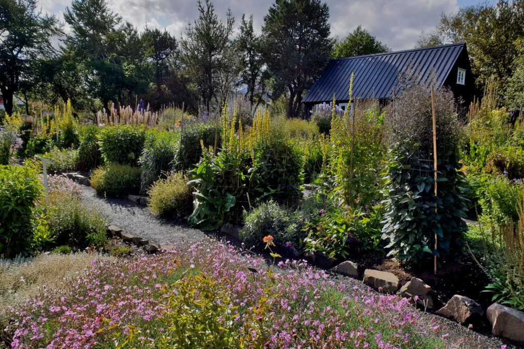 Island - Der Norden - Botanischer Garten Akureyri