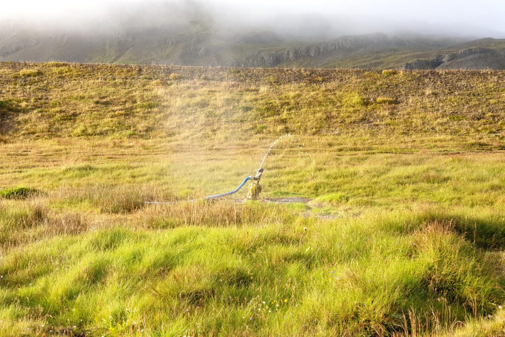 Island - Der Osten - Djúpavogskörin